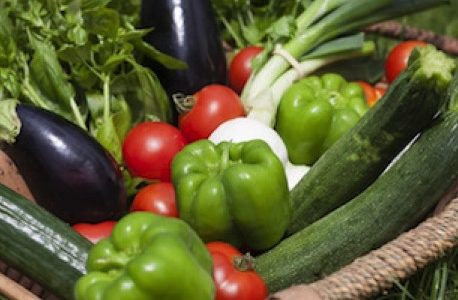 """Les produits """"bien cultivés"""" sont naturellement riches en nutriment."""