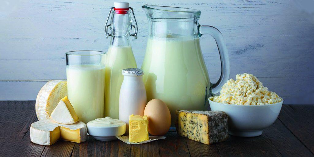 Le lactose dans les produits laitiers
